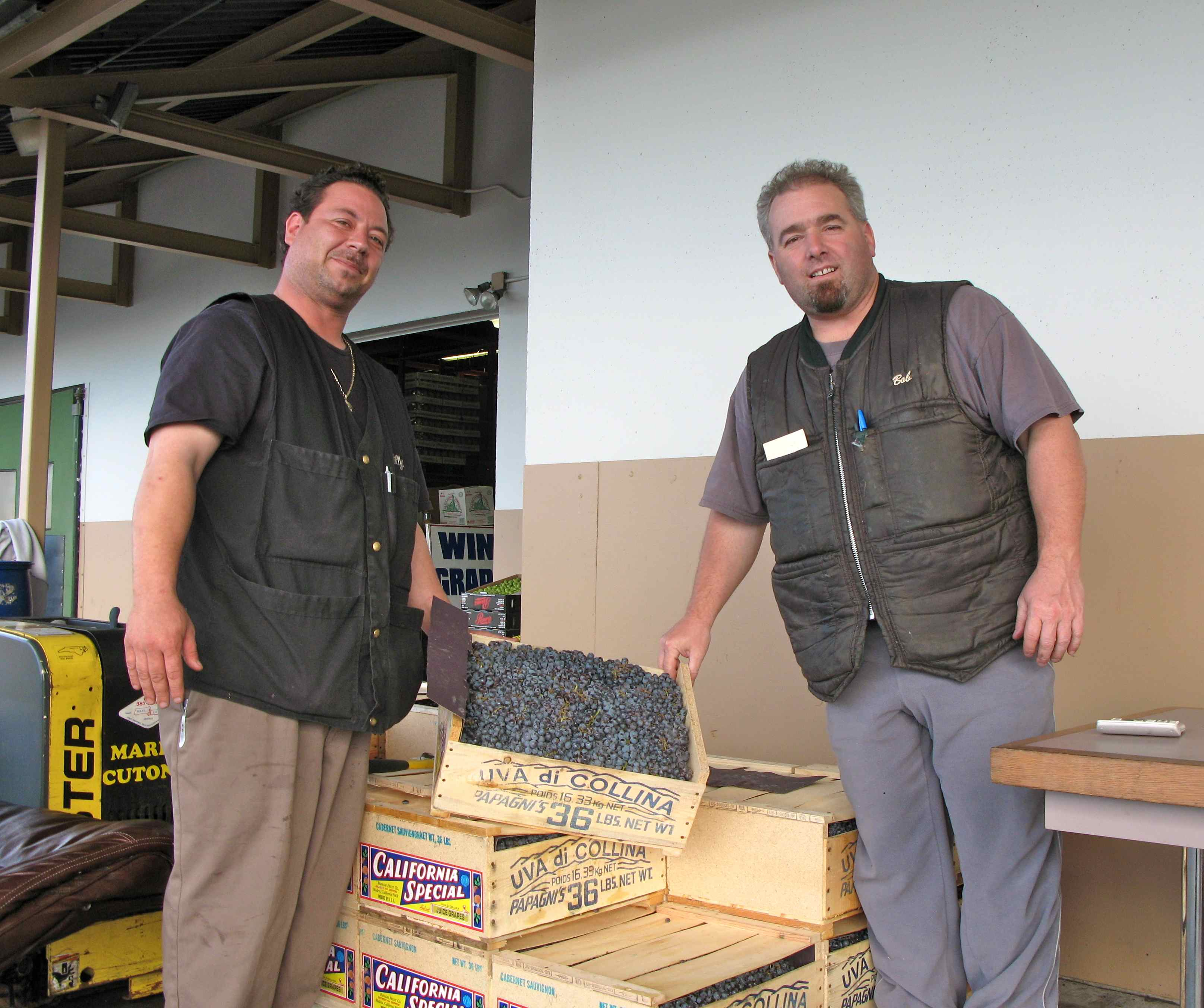 The wine grapes are available only in the fall and are shipped east from California to the produce center in Chelsea, Mass. Above, two friendly wine salesmen at the M. Cutone Mushroom Co.