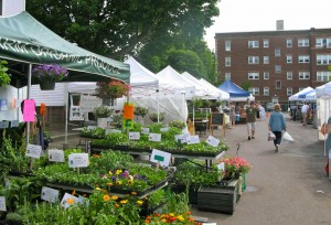 The farmers' market in Davis Square, Somerville (above) is open on Wednesdays, from noon to 5 p.m.
