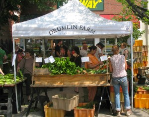 Drumlin Farm in Lincoln is just one of the farms peddling their wares at Union Square.
