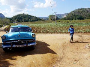A man with a cowboy hat walks near a 1950s car.
