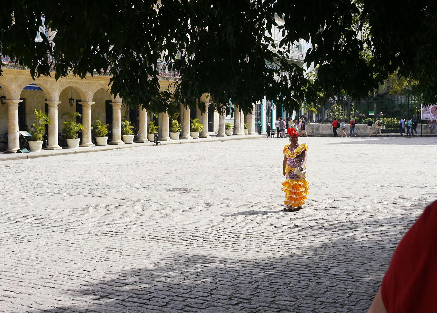 A woman in traditional clothes.